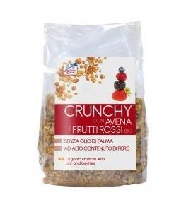 Crunchy con Avena e Frutti Rossi Bio
